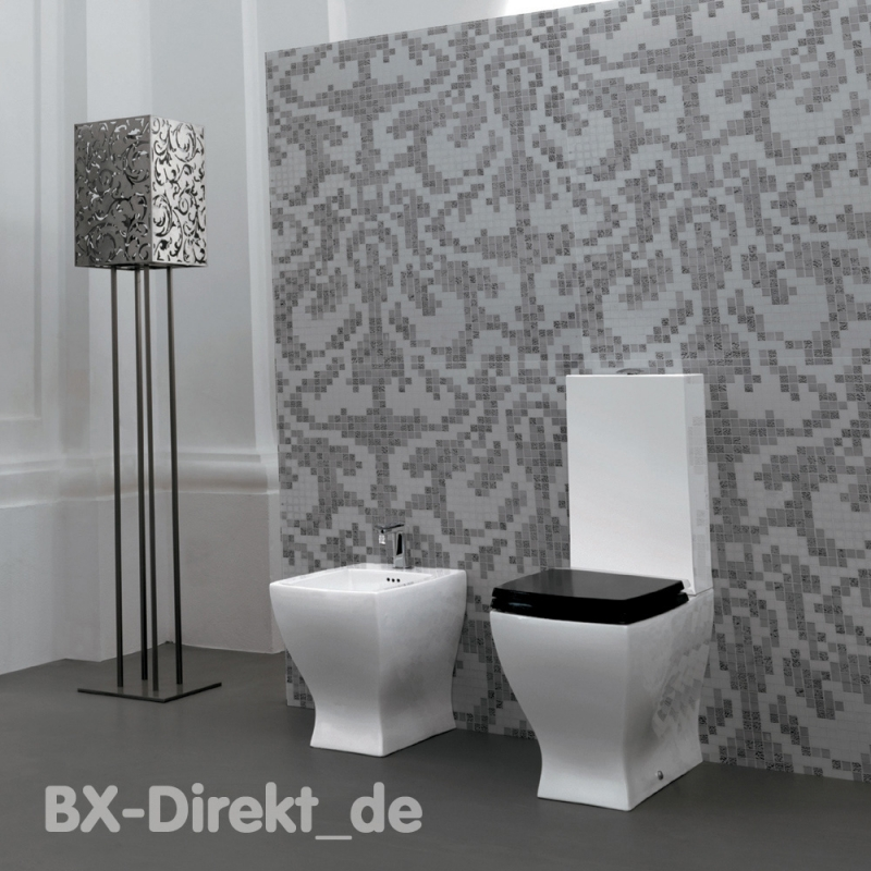 wc mit keramik sp lkasten im retro design monoblock stand. Black Bedroom Furniture Sets. Home Design Ideas